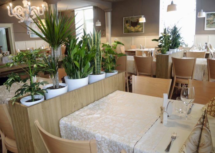 Restaurant Schwert Bad Zurzach, Gaststube